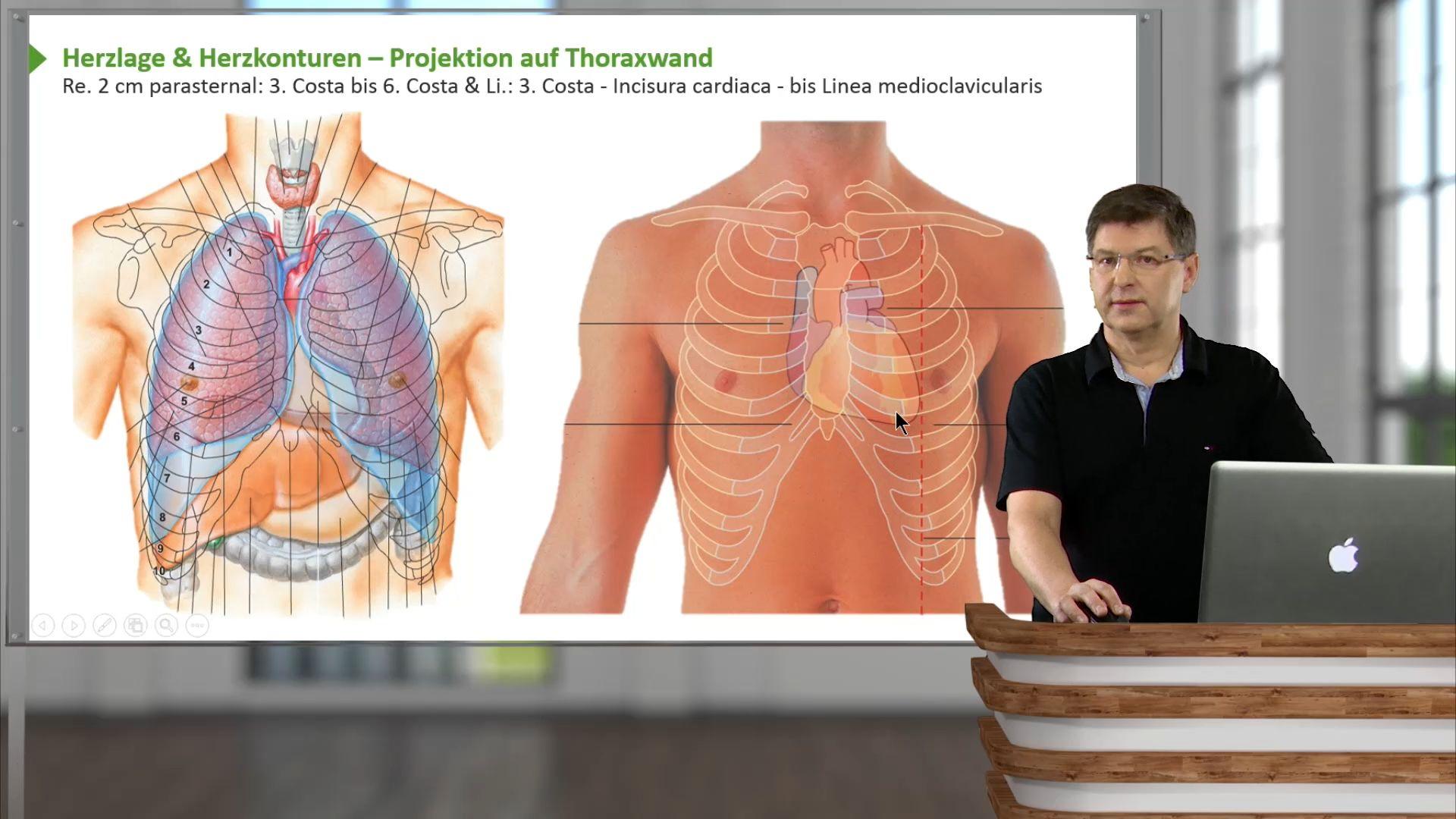 Makroskopische Anatomie – Online-Repetitorium | Lecturio
