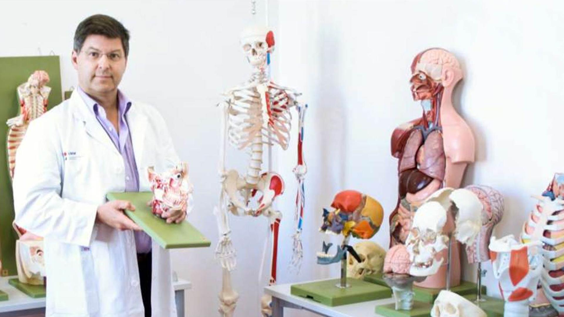 Anatomie lernen mit dem Wirth Repetitorium von Lecturio