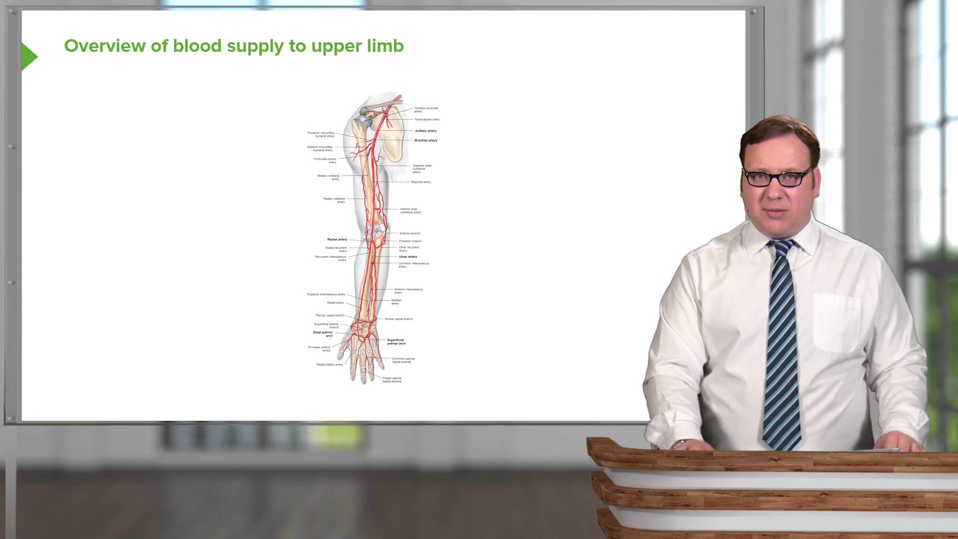Anatomy – Online USMLE Prep Course | Start now with Lecturio!