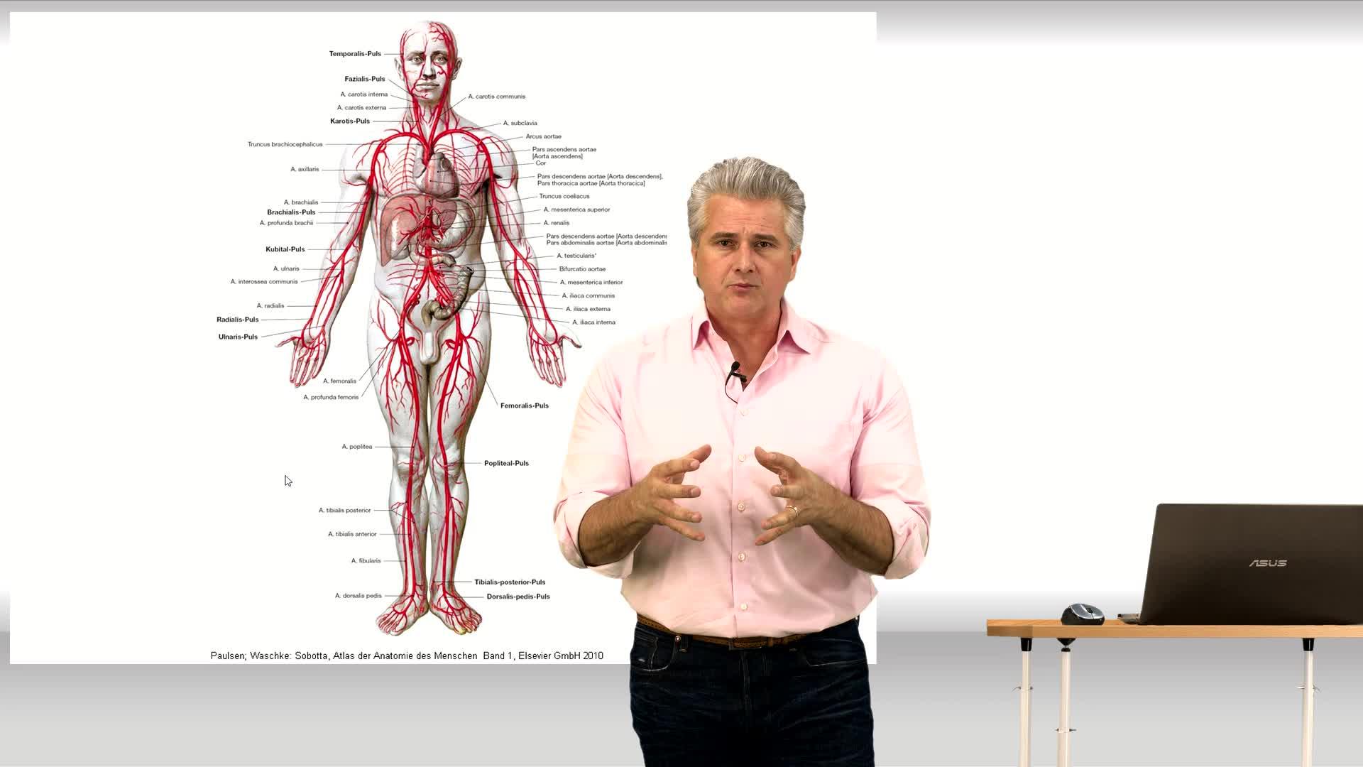 Die großen Arterien & Venen des Körpers – Online Medizin Kurs | Lecturio