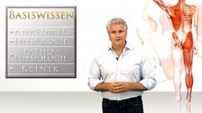 UNI-MED-Osteopathie: Einführung