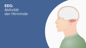 EEG: Aktivität der Hirnrinde