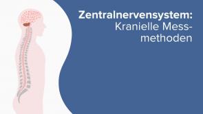 Zentralnervensystem: Kranielle Messmethoden