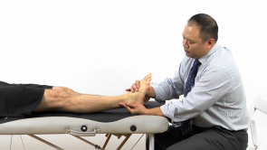 Osteopathic Diagnosis of the Ankle and Foot Region (release in progress)