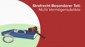 Strafrecht Besonderer Teil: Nicht Vermögensdelikte