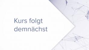 Geschäftsfeldinnovation: Möglichkeiten und Strategien (coming soon)