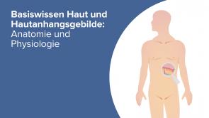Basiswissen Haut und Hautanhangsgebilde: Anatomie und Physiologie