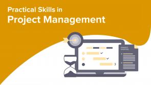 Practical Skills in Project Management (EN)
