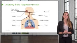 Respiratory Disorders – Pediatric Nursing