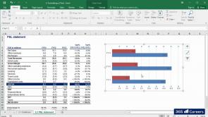 Microsoft Excel: Professional Charts (EN)
