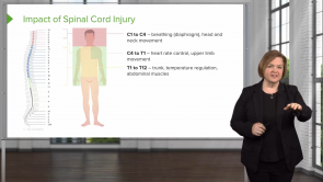 Spinal Cord Injuries and Syndromes (Nursing)