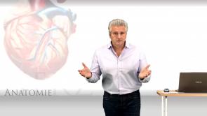 Basiswissen Naturwissenschaft, Anatomie und Physiologie (BW Medizin Teil 1)