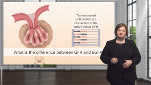 Glomerular Filtration Rate (GFR) – Renal Assessment (Nursing)