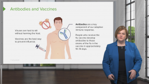Influenza and Pneumococcal Vaccination (Nursing) (quiz coming soon)