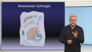 Basiswissen Zytologie (Zellenlehre)