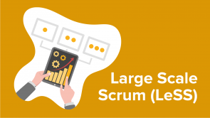 Large Scale Scrum (LeSS)