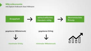 Mikroökonomie (Theorie der Marktwirtschaft)