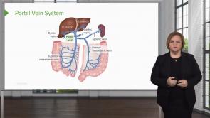 Gastrointestinal Pathology (NP)