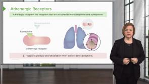 Respiratory System (NP)