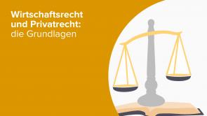 Wirtschaftsrecht und Privatrecht: die Grundlagen