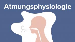 Atmungsphysiologie
