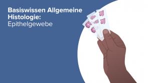 Basiswissen Allgemeine Histologie: Epithelgewebe
