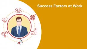 Success Factors at Work