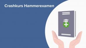 Crashkurs Hammerexamen