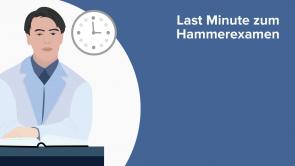 Last Minute zum Hammerexamen