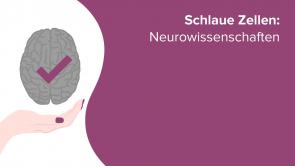 Schlaue Zellen: Neurowissenschaften