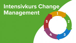 Intensivkurs Change Management