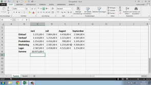 Excel 2013 (Deutsch)