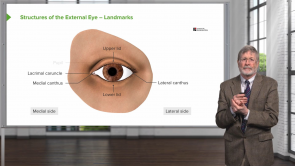 Introduction to Ophthalmology