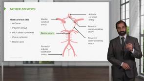Neuropathology: Foundations