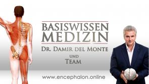 Skript - Klinik mit Untersuchungs- und Injektionstechniken