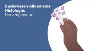 Basiswissen Allgemeine Histologie: Nervengewebe