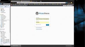 WordPress: Getting Started