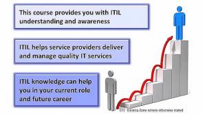 ITIL® Lite