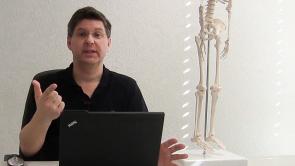 Untere Extremität - Knie-Anatomie