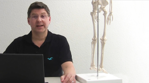 Anatomie Repetitorium - Bewegungssystem