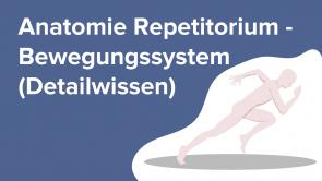 Anatomie Repetitorium - Bewegungssystem (Detailwissen)