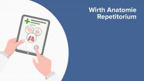 Wirth Anatomie Repetitorium