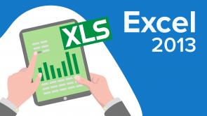 Microsoft Excel 2013 (EN)