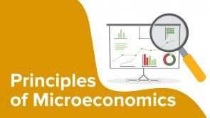 Principles of Microeconomics (EN)