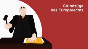 Grundzüge des Europarechts