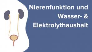 Nierenfunktion und Wasser- & Elektrolythaushalt