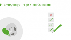 Embryology - High Yield Questions
