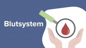 Blutsystem