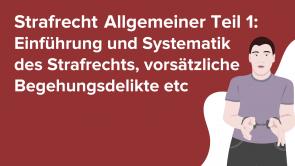 Strafrecht Allgemeiner Teil 1: Einführung und Systematik des Strafrechts, vorsätzliche Begehungsdelikte, Unterlassungsdelikte, Fahrlässigkeitsdelikte, Vorsatz-Fahrlässigkeitskombinationen