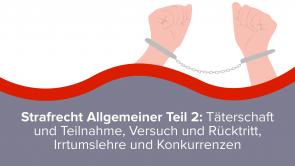 Strafrecht Allgemeiner Teil 2: Täterschaft und Teilnahme, Versuch und Rücktritt, Irrtumslehre und Konkurrenzen